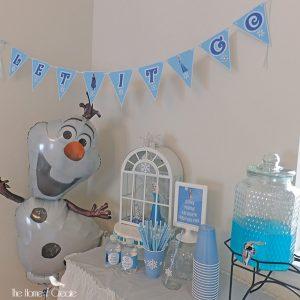 DIY Disney Frozen Birthday Party on a budget.