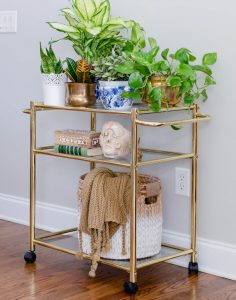 indoor plants | bar cart | plants | greenery | thehomeicreate.com