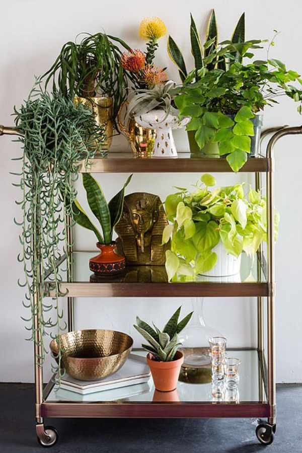 Bart Cart Plant Stand