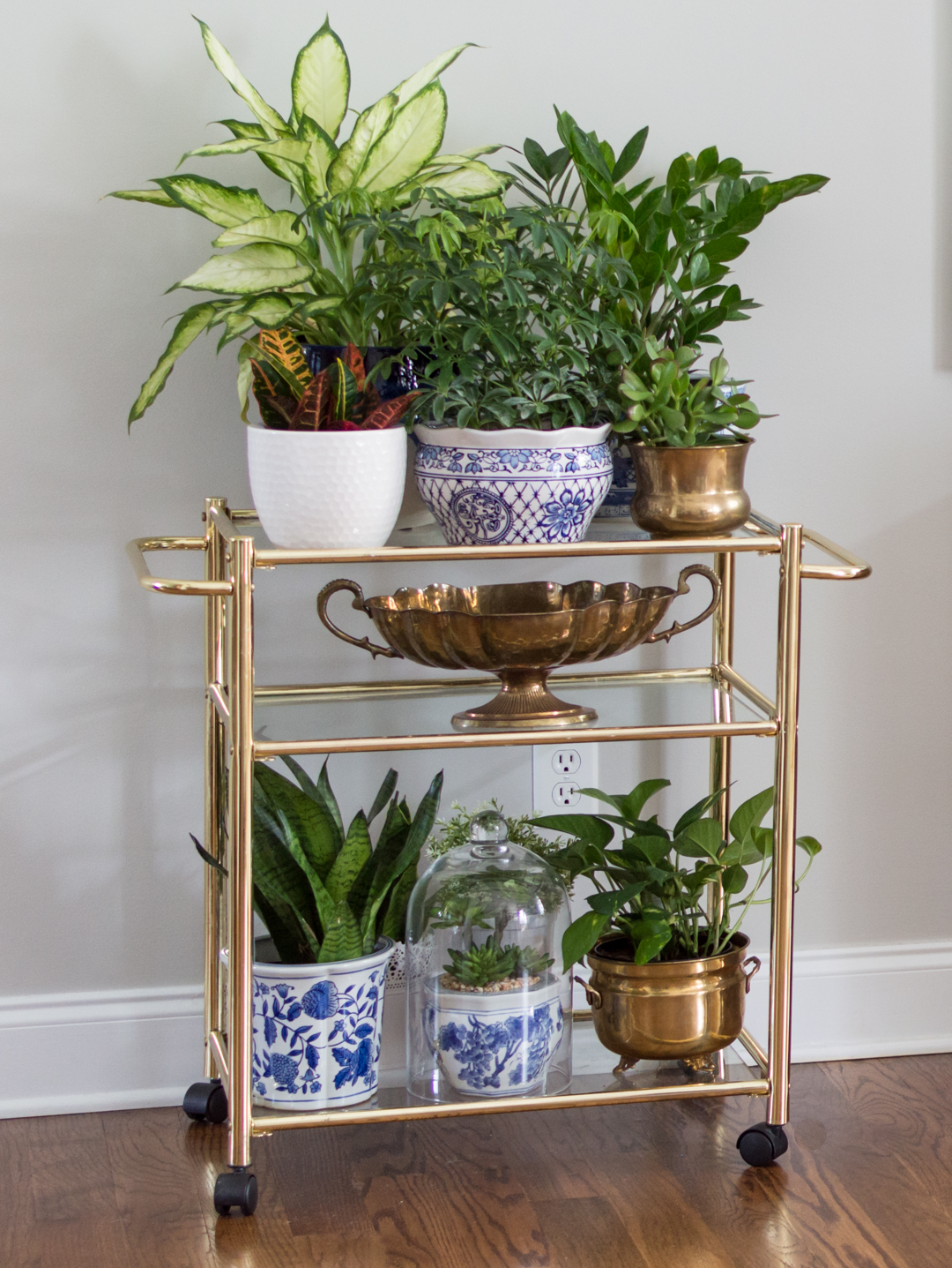This Is Also A Great Way To Corral Your Plants When You Start Becoming A  Plant Hoarders Like Me ?!