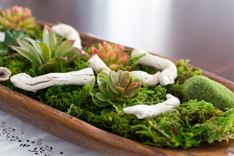 Faux Succulents160513-80