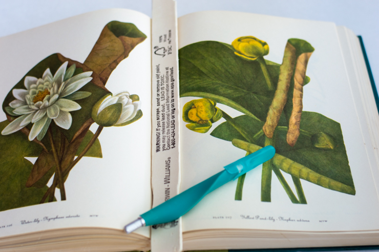 how to remove pages from a book