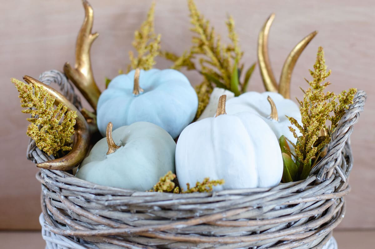 Painted Pumpkins – Cheap to Pretty Chic!