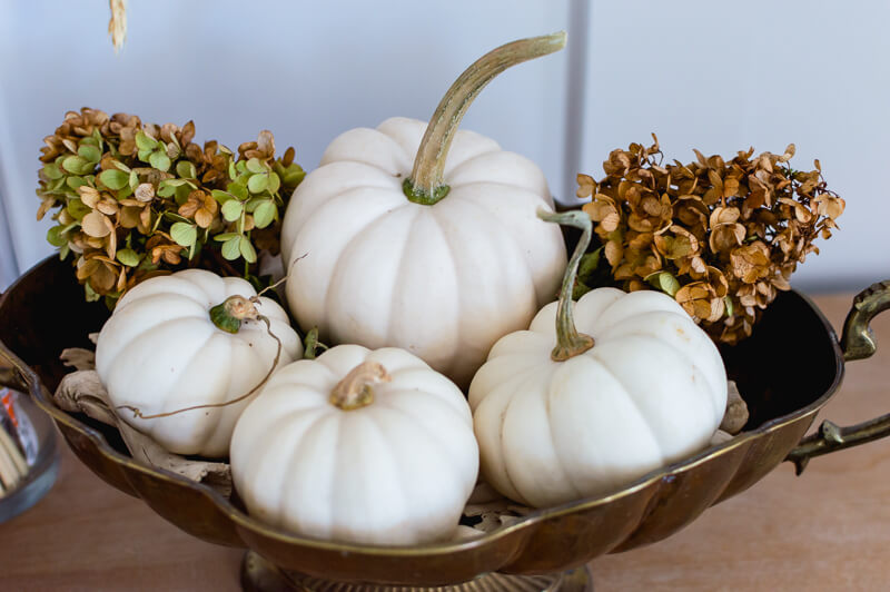 small-white-pumpkins