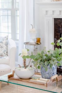 Silver dollar eucalyptus | the home i create