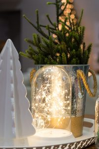Simple Glowing Glass Cloches