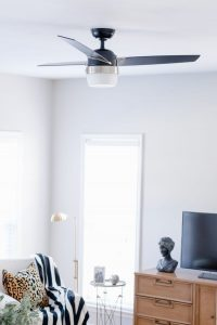 Modern Ceiling Fan With Lights
