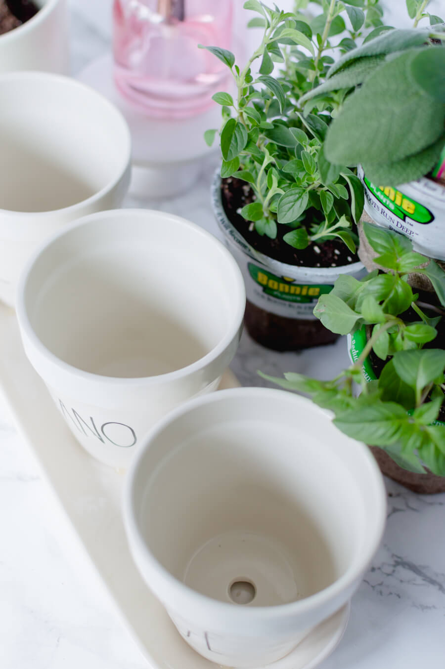 Rae Dunn herb pots for indoor herb gardens