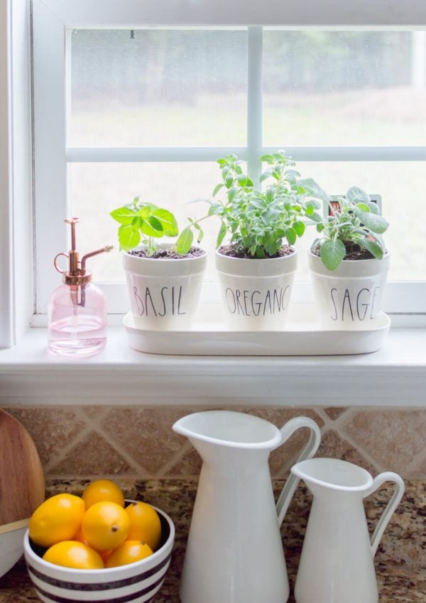 Easy DIY Kitchen Herb Garden