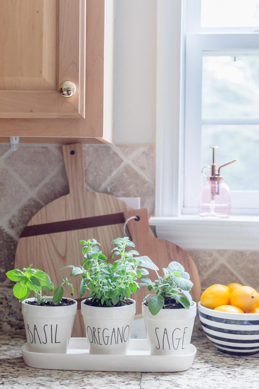 Easy herb garden in the kitchen