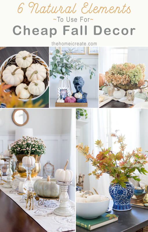 6 Natural Elements To Use For Cheap Fall Decor The Home I Create