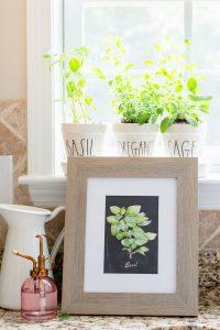 Herb Printables
