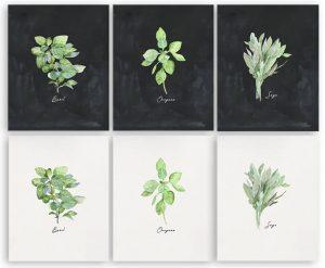 Free Herb Printables All