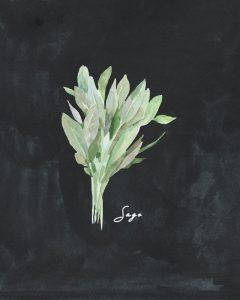 Free Herb Printables Chalk Sage