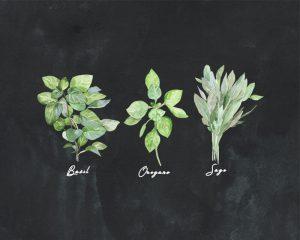 Free Herb Printables Trio Chalk