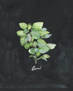 Free Herb Printables chalk basil