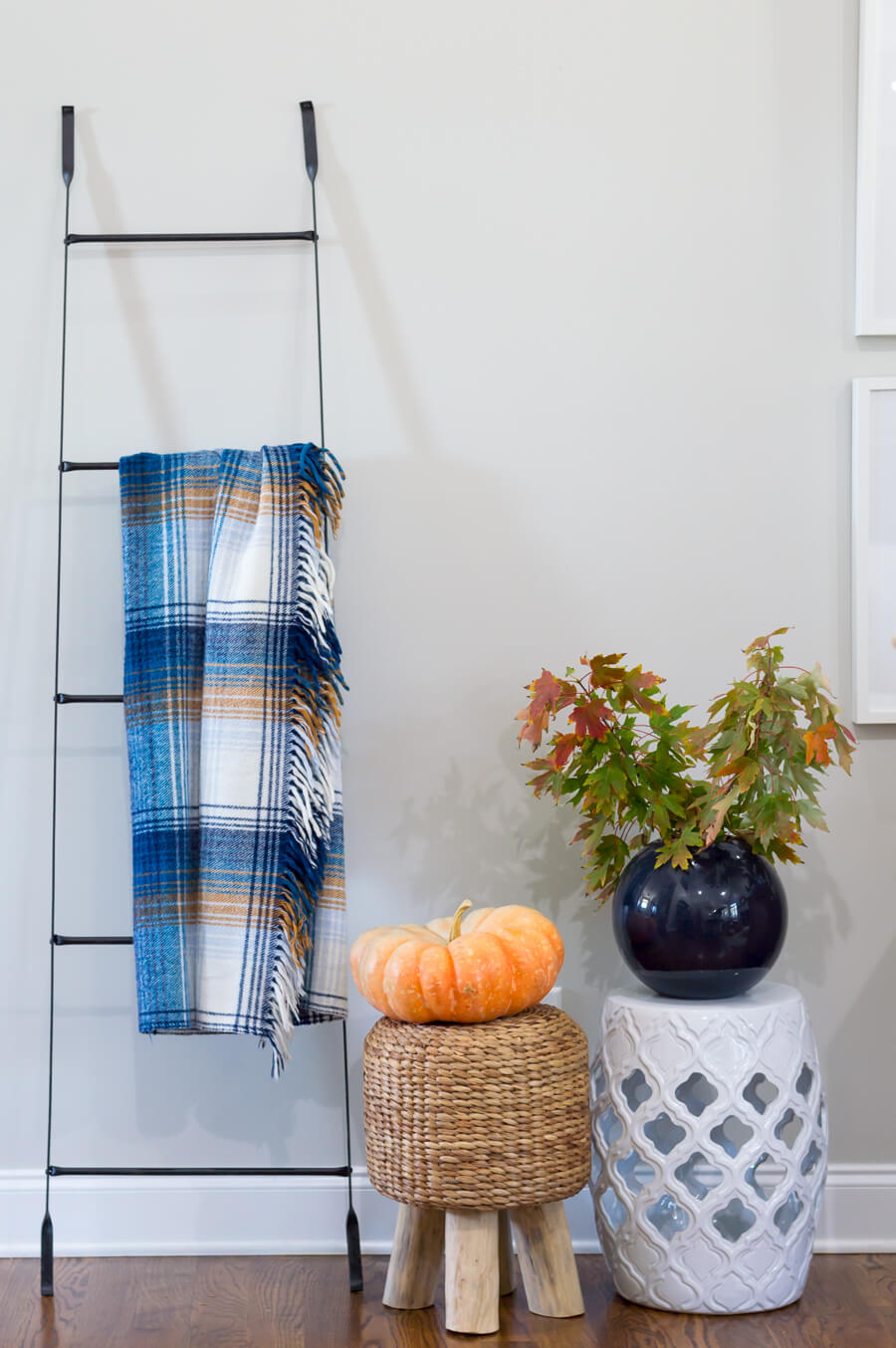 Magnolia ladder and fall leaves clipping
