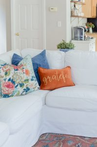 Blue and Orange Fall Pillows