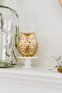 simple fall fireplace gold owl