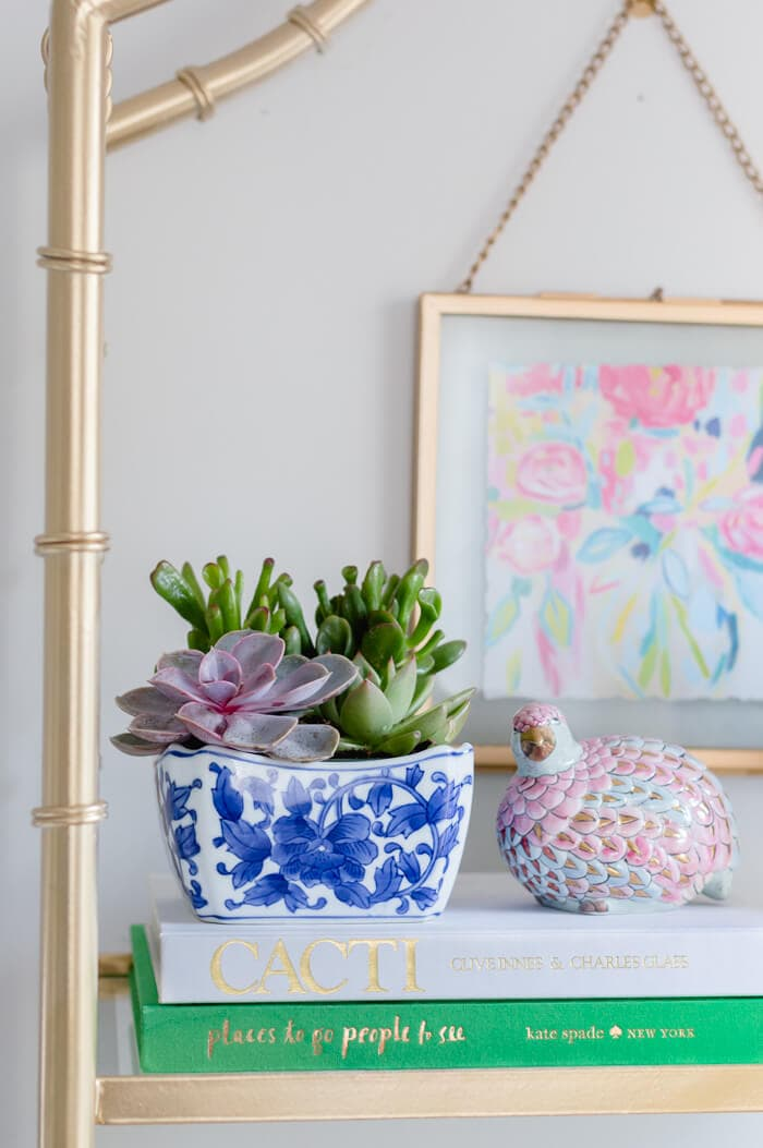 Succulents In Blue and White Bowl
