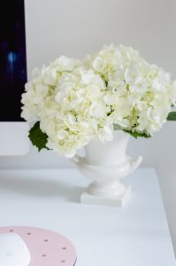 White Hydrangea In White Vase