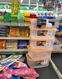 Dollar Tree Containers